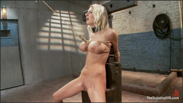 Training Porn