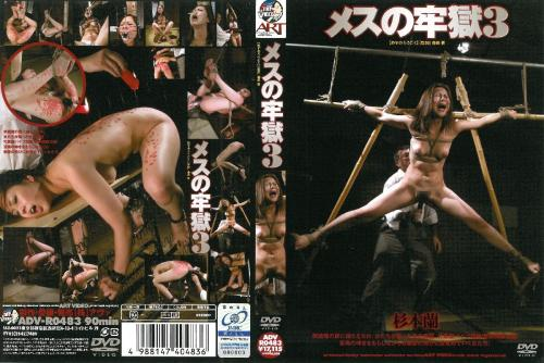 [ADV-R0483] Sugimoto Ran メスの牢獄 3 アート(アヴァ)Restraints